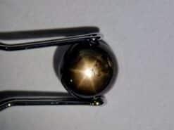 crna zvijezda safir 1.42 ct
