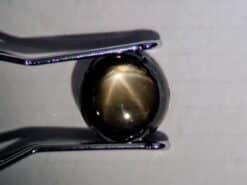 safir estrella negra 1.52 ct