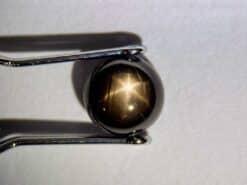 safir estrella negra 1.58 ct